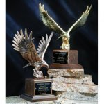 Majestic Eagle Eagle Cast Awards