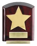 Star Dome Corporate Plaques Stand Sales Awards