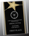Gold Star Acrylic Stand-Up Star Awards